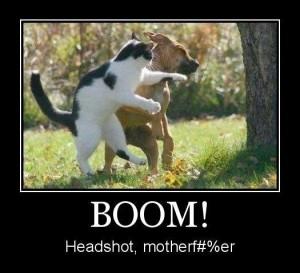 boom_e111cd_2329231